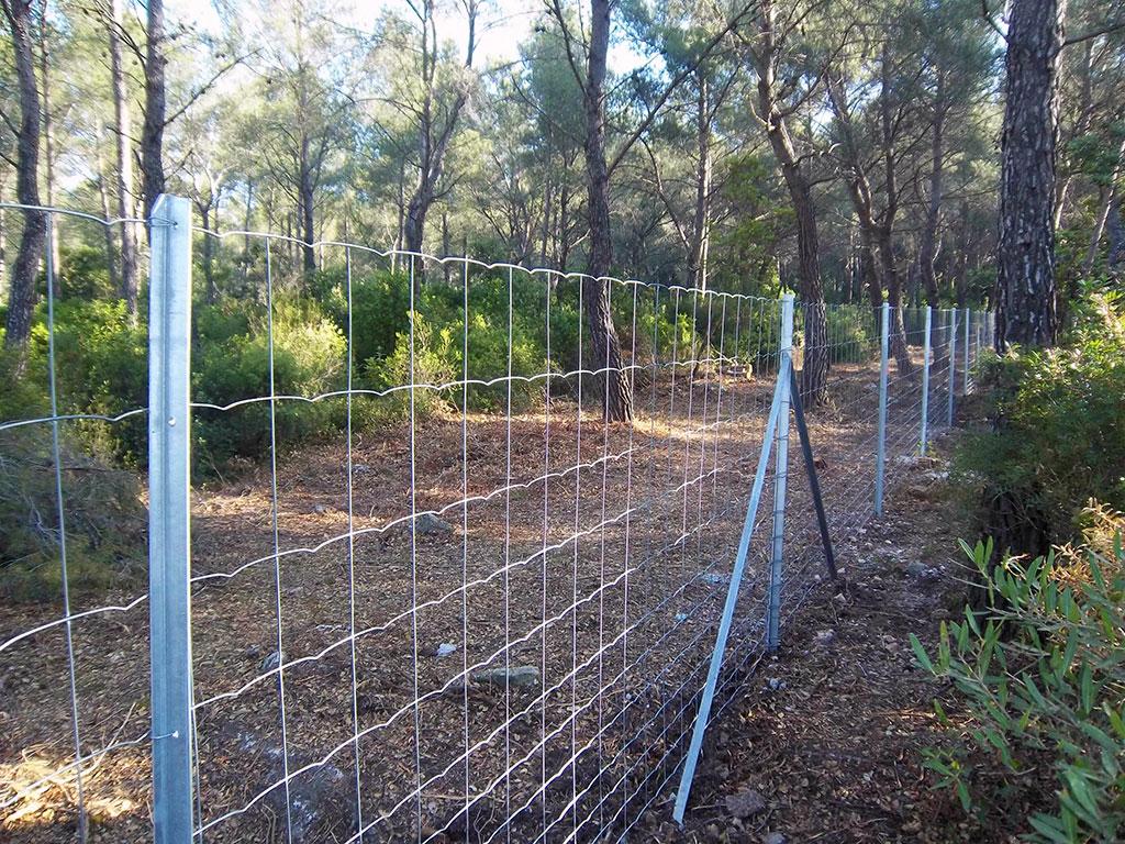 clôture maille progressive
